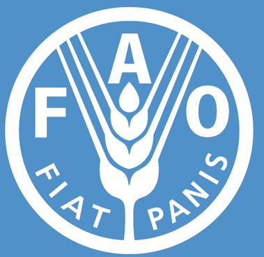 FAO Rice Training Program Ghana